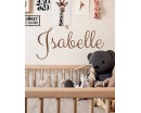 Create Your Own Name Wall Decal - Custom Vinyl Letters, Custom Vinyl Lettering Custom - Customized Children Name