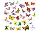 Beautiful Butterflies Wall Stickers Colorful Cute Butterflies Wall Decals For Children Room